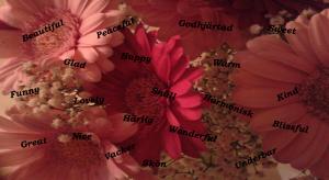 bild vackra ord